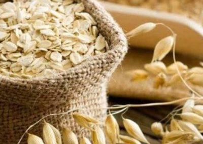 La Avena y la intolerancia al gluten